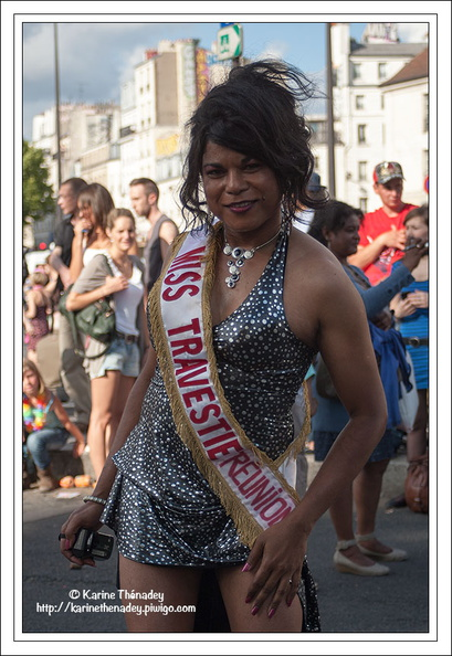Gay Pride, Paris juin  2011