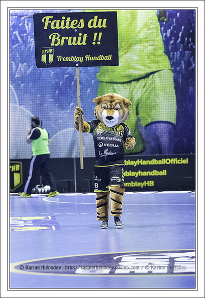 Mascotte de Tremblay Handball (2017/11/22)